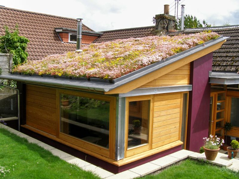 contemporary sarnafil green roof gallery landscaping ideas for backyard. Black Bedroom Furniture Sets. Home Design Ideas
